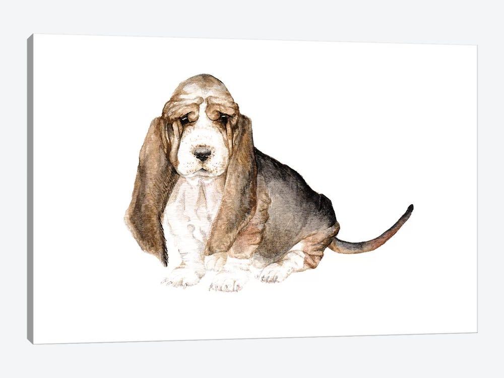 Basset Hound by Wandering Laur 1-piece Art Print