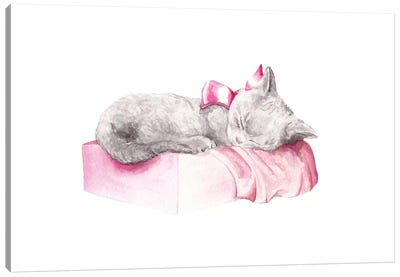 Sleepy Kitten Canvas Art Print