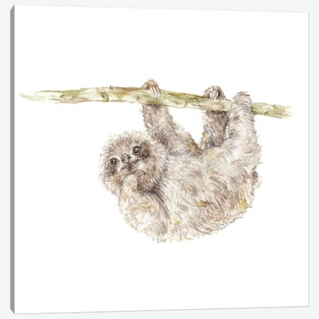 Sloth Canvas Print #RGF83} by Wandering Laur Canvas Artwork