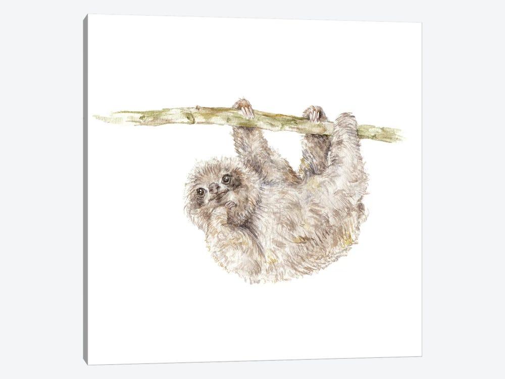 Sloth by Wandering Laur 1-piece Canvas Artwork