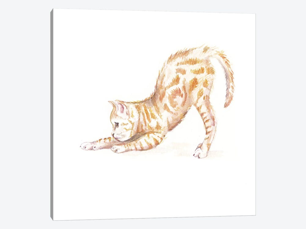 Stretching Ginger Cat by Wandering Laur 1-piece Canvas Print