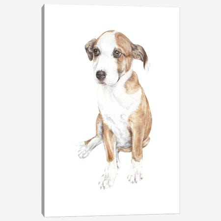 Sweet Puppy Dog Canvas Print #RGF87} by Wandering Laur Canvas Art Print