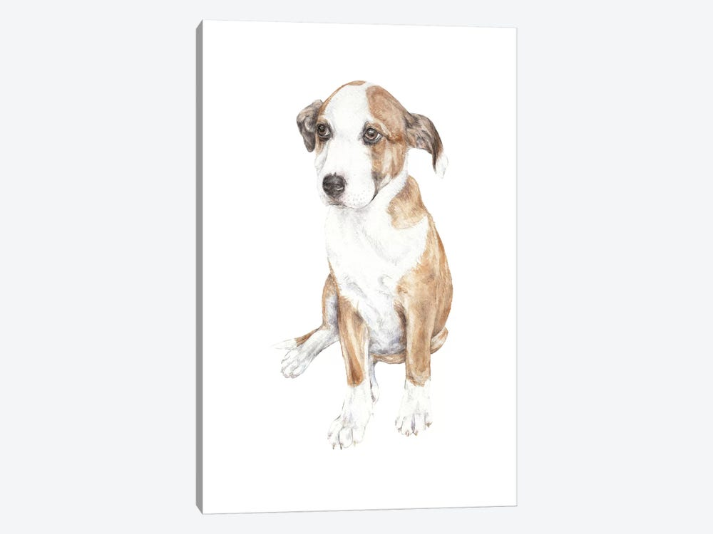 Sweet Puppy Dog by Wandering Laur 1-piece Canvas Artwork