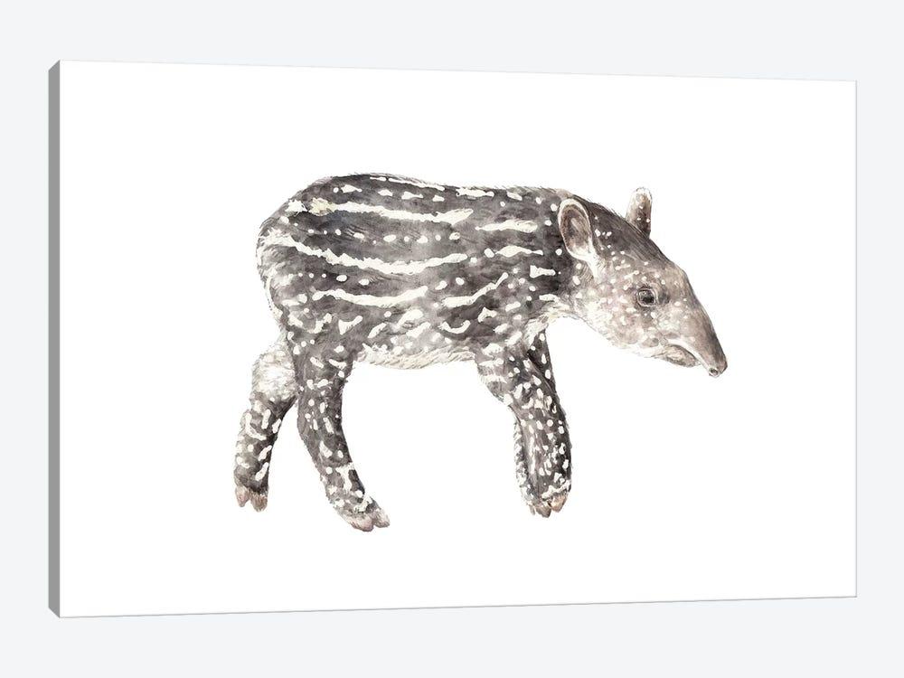 Tapir Calf by Wandering Laur 1-piece Canvas Art