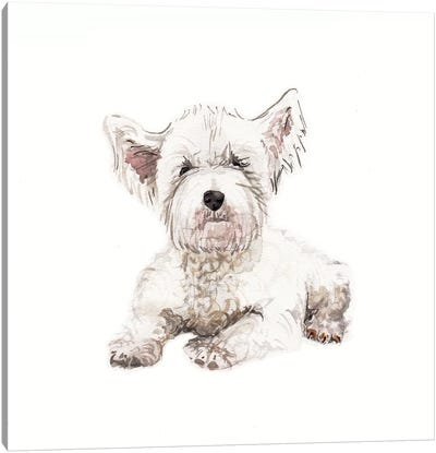 West Highland White Terrier Puppy Canvas Art Print