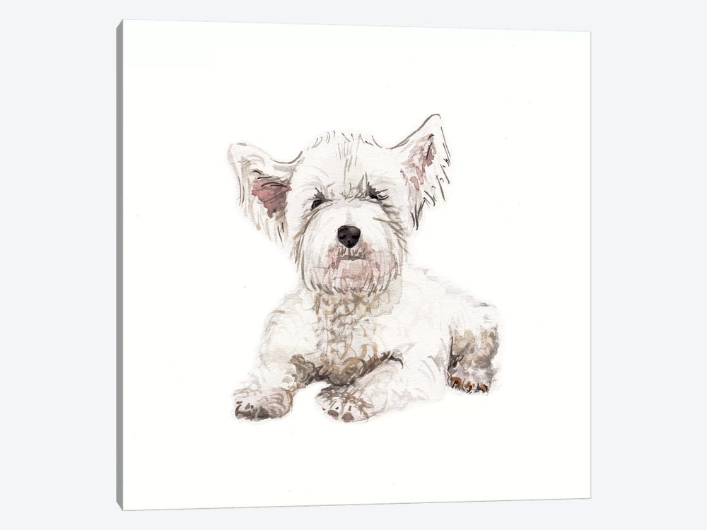 West Highland White Terrier Puppy by Wandering Laur 1-piece Canvas Wall Art