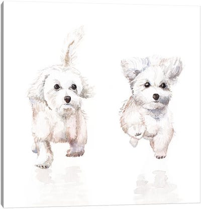 White Running Pups Canvas Art Print