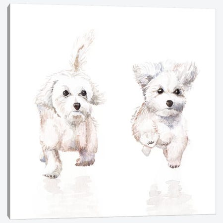 White Running Pups Canvas Print #RGF93} by Wandering Laur Art Print