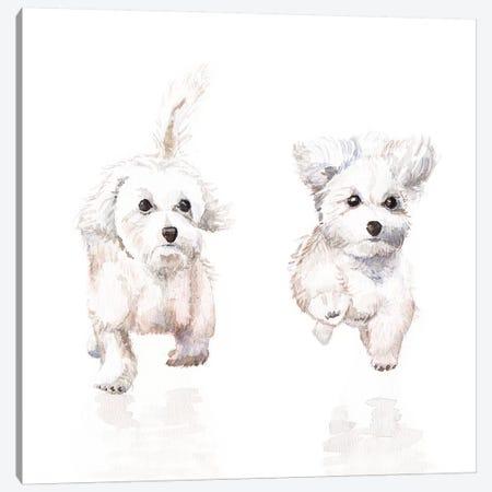 White Running Pups Canvas Print #RGF93} by Wandering Laur Art Print