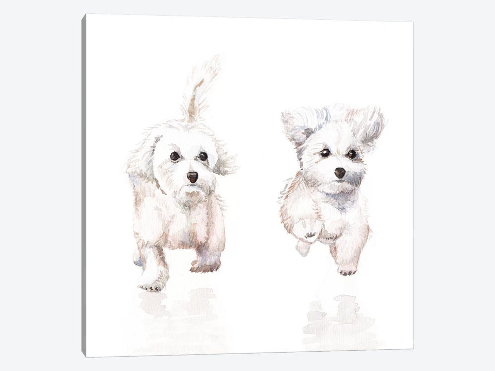 White Running Pups by Wandering Laur 1-piece Canvas Art Print
