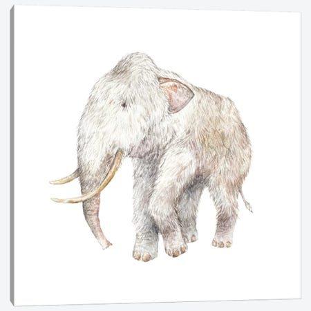 Woolly Mammoth Canvas Print #RGF97} by Wandering Laur Canvas Artwork