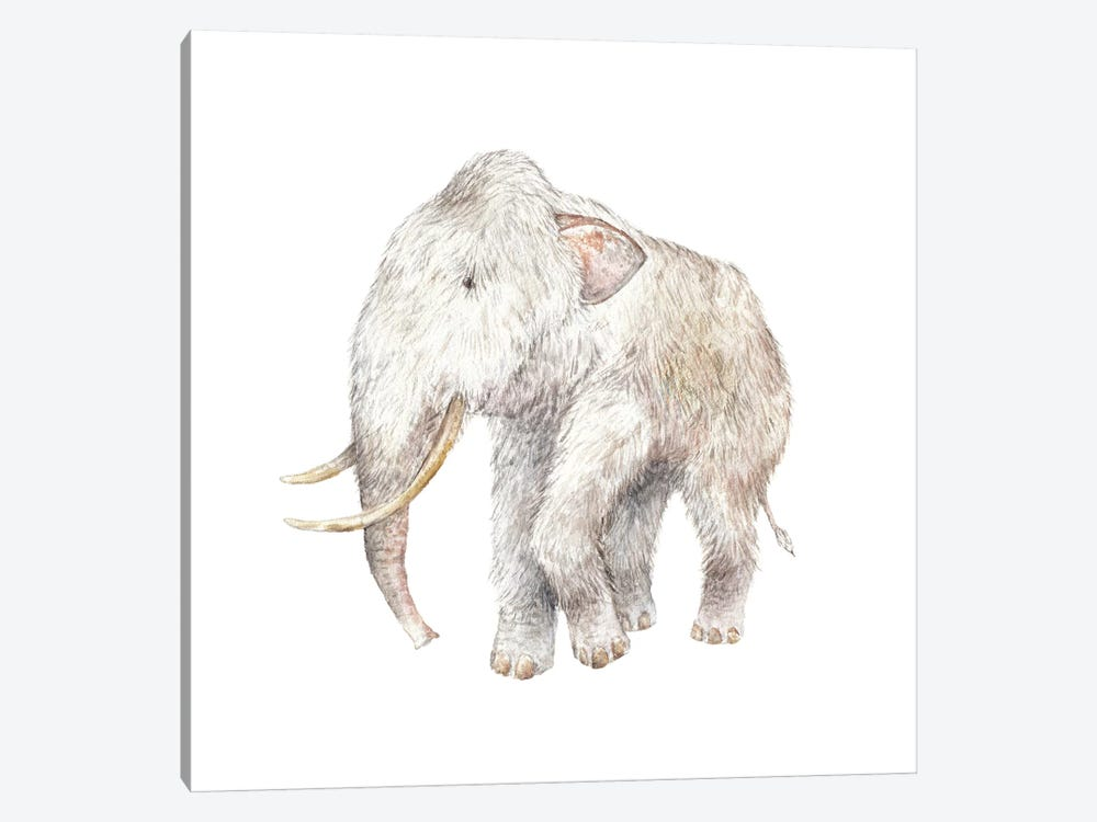 Woolly Mammoth by Wandering Laur 1-piece Canvas Art Print