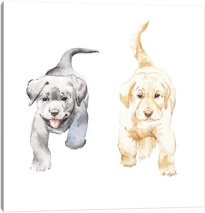 Yellow And Black Lab Puppies Canvas Art Print