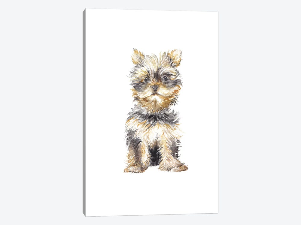 Yorkshire Terrier by Wandering Laur 1-piece Canvas Print