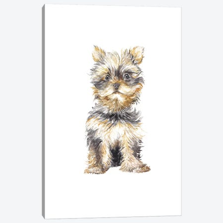 Yorkshire Terrier Canvas Print #RGF99} by Wandering Laur Canvas Print