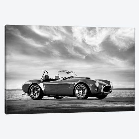 AC Shelby Cobra Canvas Print #RGN534} by Mark Rogan Canvas Art Print