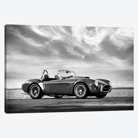 AC Shelby Cobra 3-Piece Canvas #RGN534} by Mark Rogan Canvas Art Print