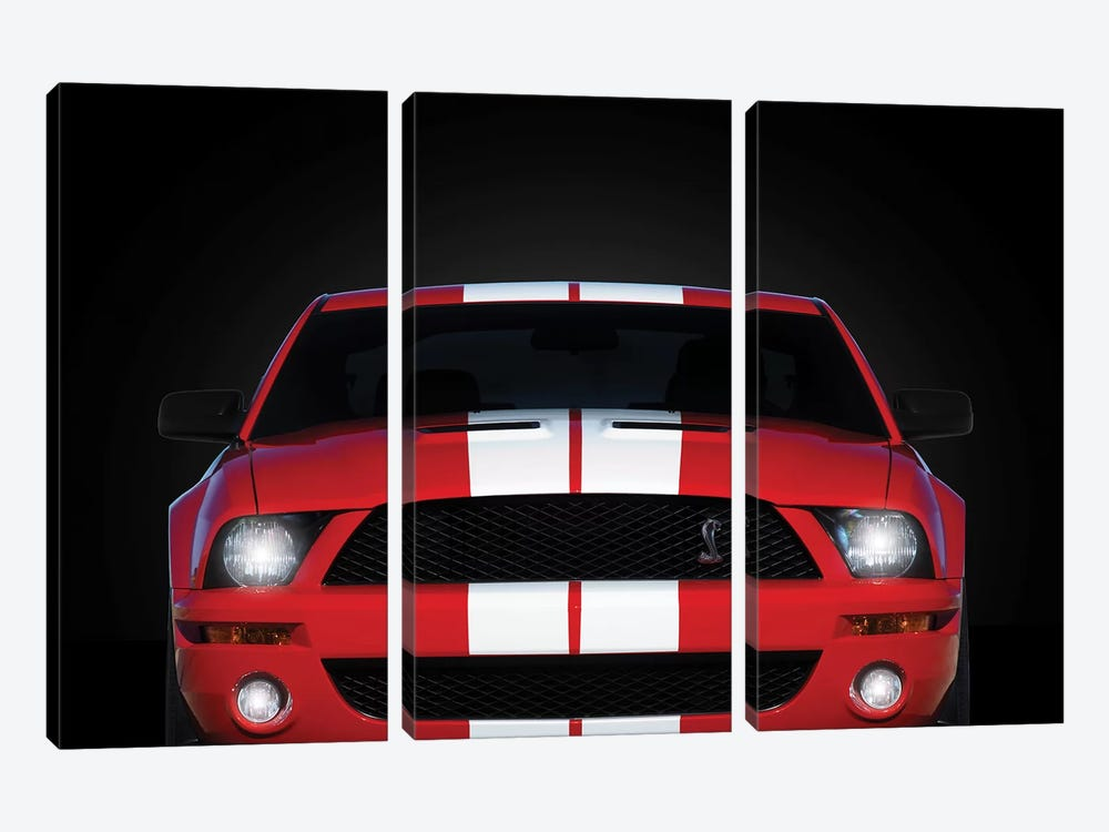 Shelby Mustang GT500 by Mark Rogan 3-piece Canvas Art Print