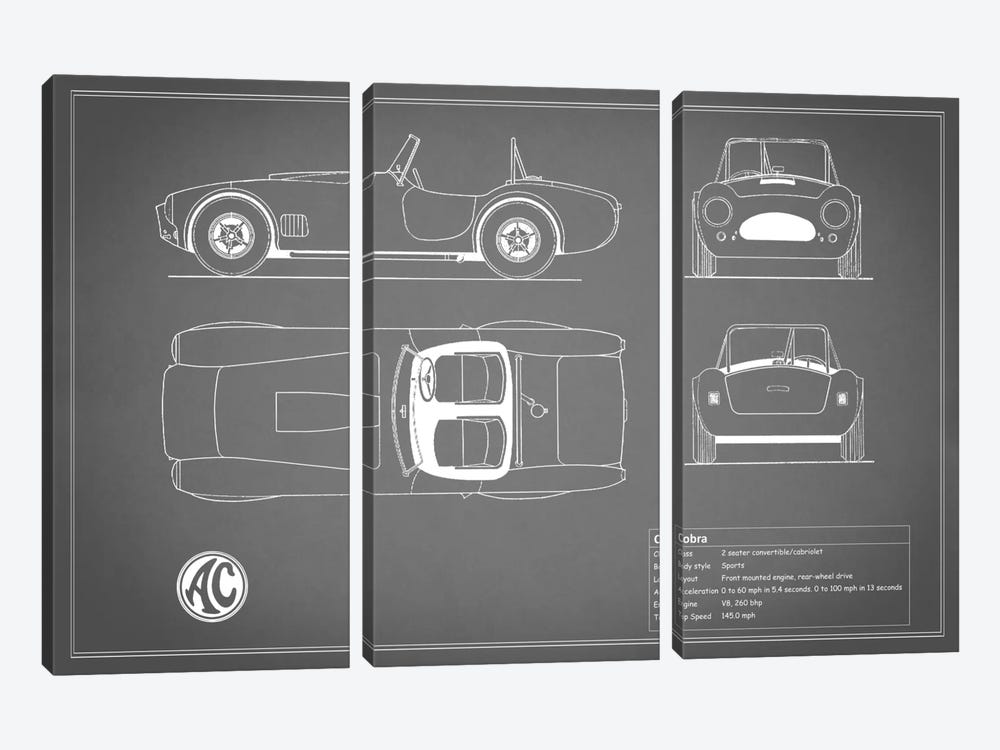 AC Cobra Roadster (Grey) by Mark Rogan 3-piece Canvas Artwork