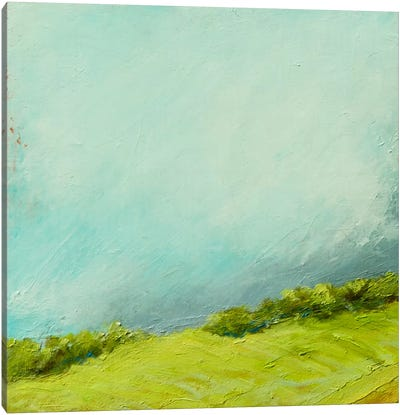Summer Storm Canvas Print #RGO15