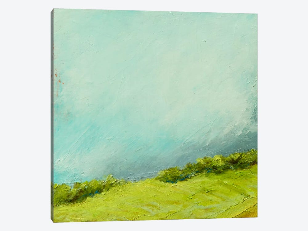 Summer Storm by Rich Gombar 1-piece Canvas Print