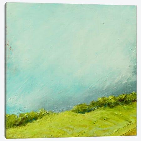 Summer Storm Canvas Print #RGO15} by Rich Gombar Canvas Art Print