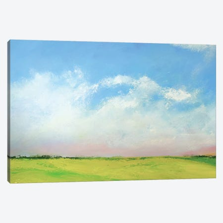 Dark Field Canvas Print #RGO17} by Rich Gombar Canvas Art Print