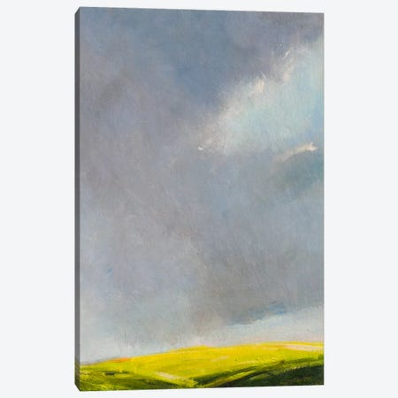 A Hint of Light Canvas Print #RGO1} by Rich Gombar Canvas Print