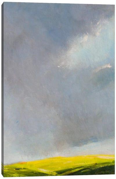 A Hint of Light Canvas Print #RGO1
