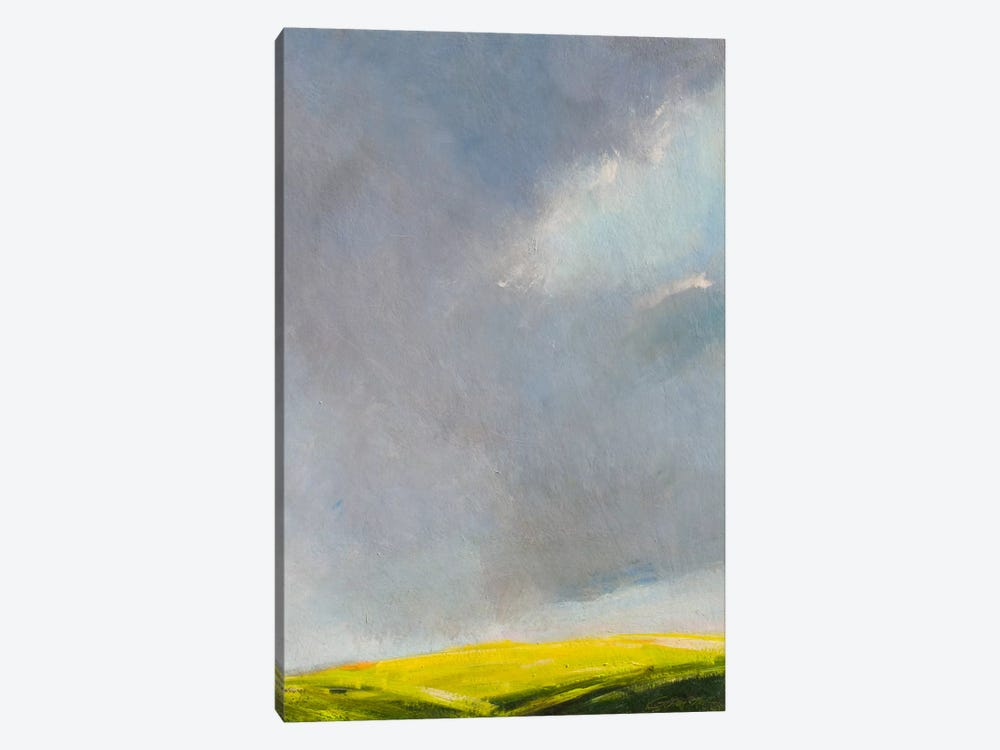 A Hint of Light by Rich Gombar 1-piece Canvas Wall Art