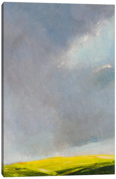 A Hint of Light Canvas Art Print