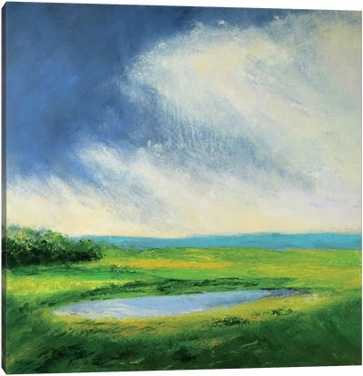 Fordsbush Pond Canvas Art Print