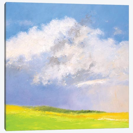 Summer Shower Canvas Print #RGO25} by Rich Gombar Canvas Art