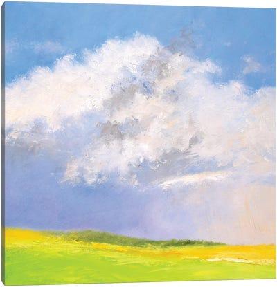 Summer Shower Canvas Art Print