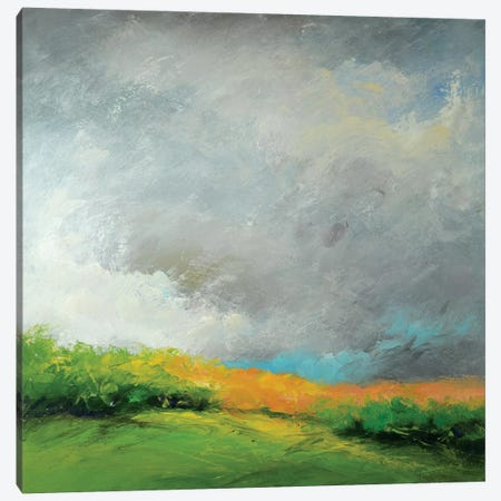 Autumn Storm Canvas Print #RGO27} by Rich Gombar Canvas Artwork