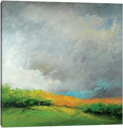 Autumn Storm Canvas Art Print