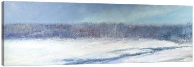 Beaver Meadow Canvas Art Print