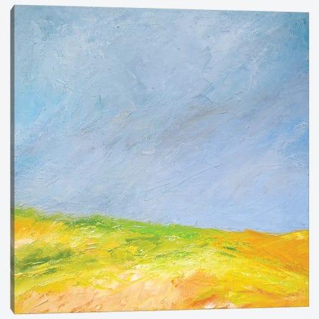 Dune Light Canvas Print #RGO35} by Rich Gombar Art Print