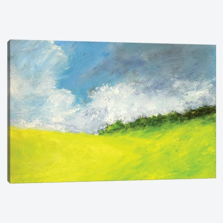 May Clouds Canvas Print #RGO38} by Rich Gombar Canvas Artwork