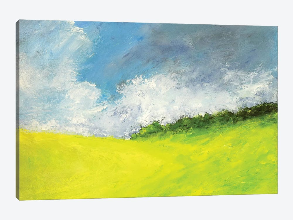 May Clouds by Rich Gombar 1-piece Canvas Artwork
