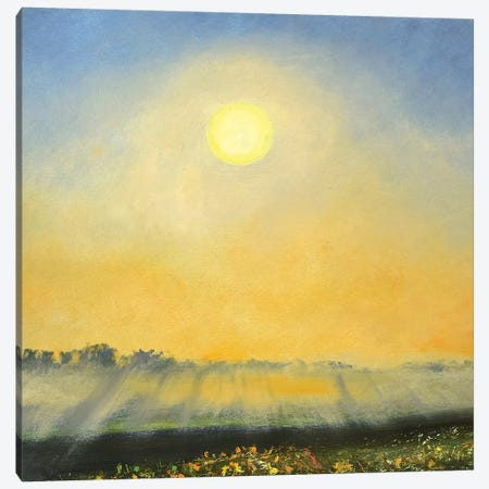 Mist Canvas Print #RGO39} by Rich Gombar Canvas Art