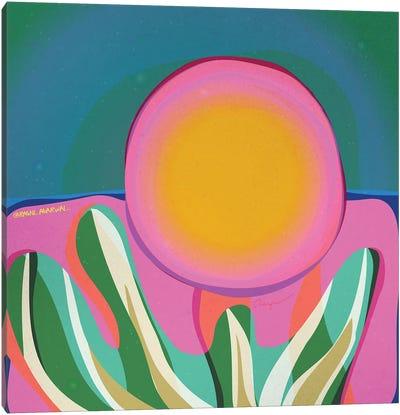 Desert Palette Canvas Art Print