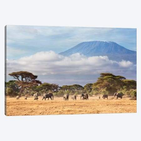 African Elephant Herd In Savanna, Mount Kilimanjaro, Amboseli National Park, Kenya Canvas Print #RGW1} by Richard Garvey-Williams Canvas Art