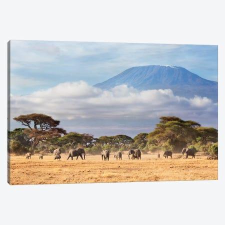 African Elephant Herd In Savanna, Mount Kilimanjaro, Amboseli National Park, Kenya 3-Piece Canvas #RGW1} by Richard Garvey-Williams Canvas Art
