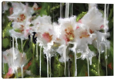 White Flor I Canvas Art Print