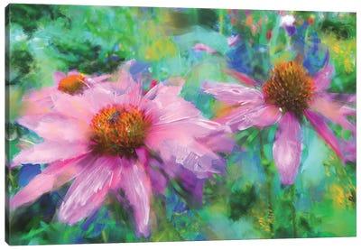 Echinacea Street Canvas Art Print