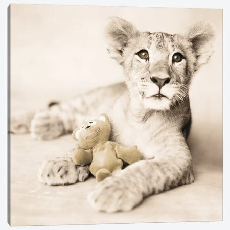 Arjuna And Teddy Canvas Print #RHA3} by Rachael Hale Canvas Wall Art