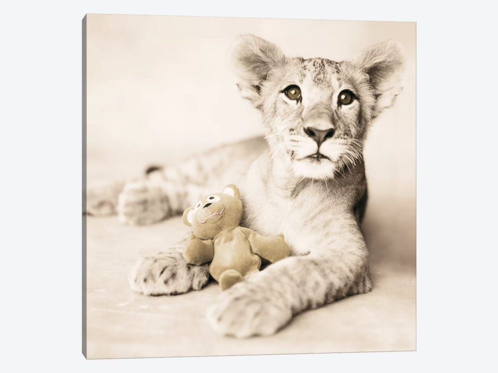 Arjuna And Teddy by Rachael Hale 1-piece Canvas Artwork
