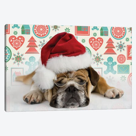 Bruno Holiday Canvas Print #RHA87} by Rachael Hale Canvas Artwork