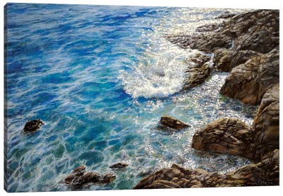 Costa Brava Canvas Art Print